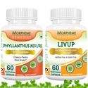 Picture of Morpheme Combo Supplements For Liver Disease & Fatty Liver-2 bottels