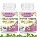Picture of Morpheme Tribulus Terrestris Capsules - Strength Formula - 500mg Extract - 60 Veg Capsules - 2 Bottles