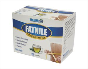Picture of Healthvit Fatnile Fat Reduction Tea Garcinia, Green Tea, Ginger 30 Sachets For Natural Weight Loss
