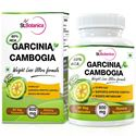 Picture of StBotanica Garcinia Cambogia For Weight Loss - 60% HCA 800mg Extract - 90 Veg Caps
