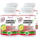 Picture of StBotanica Garcinia Cambogia Slim For Weight Loss - 100% Pure 500mg Extract - 60 Veg Caps - Pack Of 4