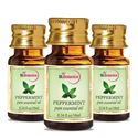 Picture of StBotanica Peppermint Pure Aroma Essential Oil, 10ml - 3 Bottles
