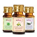 Picture of StBotanica Ylang-Ylang + Lemongrass + Rosemary Pure Essential Oil (10ml Each)