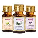 Picture of StBotanica Lavender + Rosemary + Ylang-Ylang Pure Essential Oil (10ml Each)