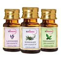Picture of StBotanica Peppermint + Rosemary + Lavender Pure Essential Oil (10ml Each)