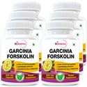 Picture of StBotanica Garcinia Forskolin 500mg Extract - 90 Veg Capsules - 6 Bottles