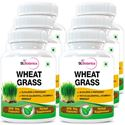 Picture of StBotanica Wheatgrass Supplements 500mg Extract - 90 Veg Capsules - 6 Bottles