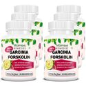 Picture of Morpheme Garcinia Forskolin Extract 500mg Extract 90 Veg Capsules - Buy 3 Get 3 Free