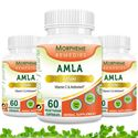 Picture of Morpheme Amla Caps Vitamin C & AntiOxidant 500mg Extract 60 Veg Caps - 3 Bottles