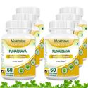 Picture of Morpheme Punarnava (Boerhavia Diffusa) 500mg Extract 60 Veg Caps - 6 Bottles